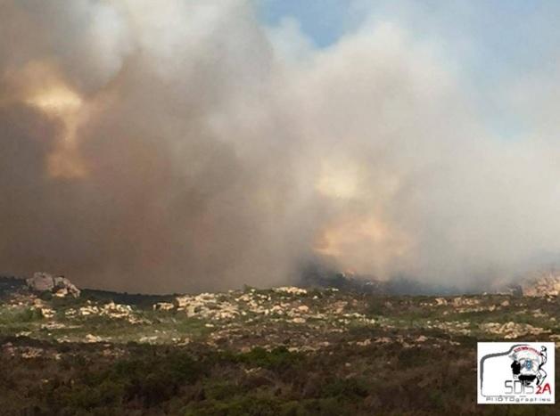 Incendie à Bonifacio en Corse, plus de 50 hectares déjà détruits