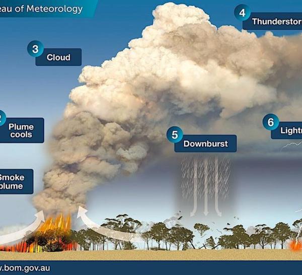 Incendies démesurés en Australie